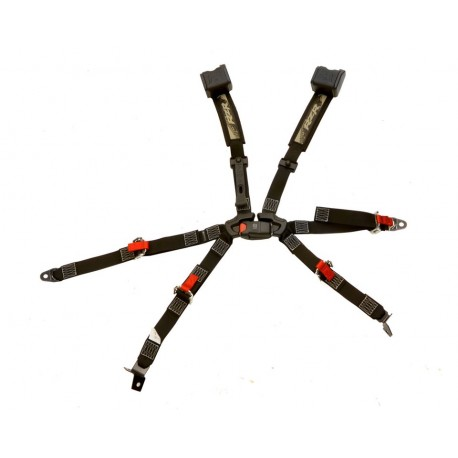 Cinturones / Arnés 6 Puntos RZR